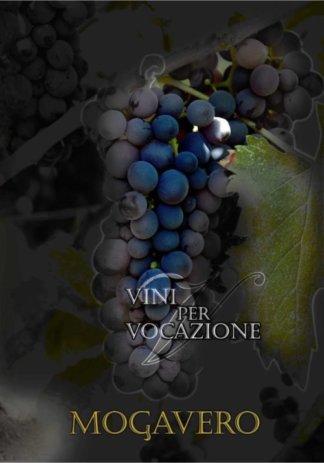Mogavero Vini Salice Salentino